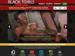 BlackTgirlsHardcore