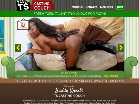 TS Casting Couch